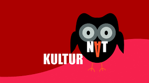Kulturnat Logo
